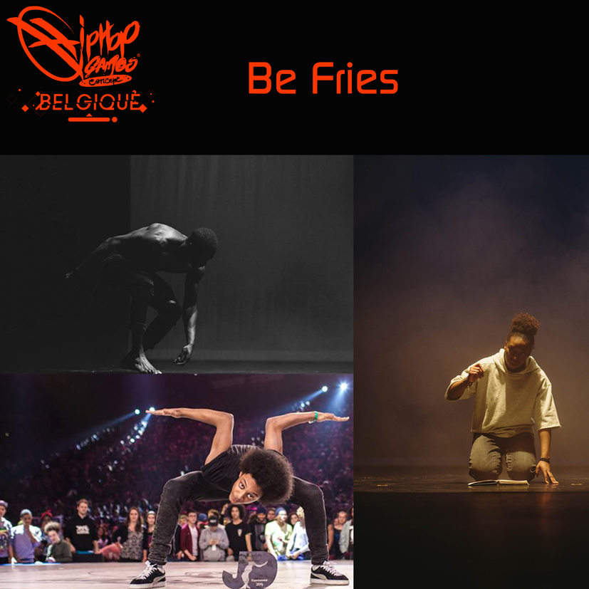 montage-be-fries-web